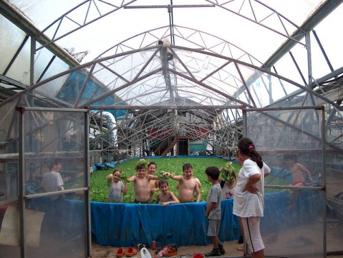 playing in the greenhouse pool kids photo