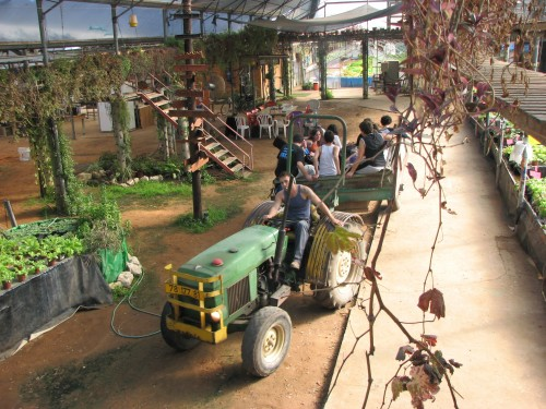 tractor-greenhouse israel photo