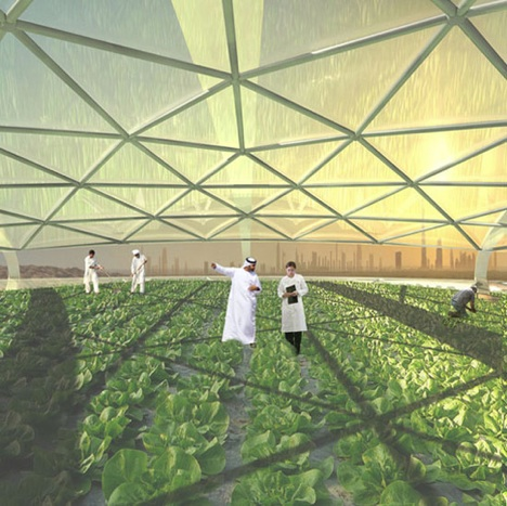 seawater-interior-dubai-vertical-farm photo
